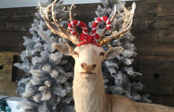 kerst-hert.jpg